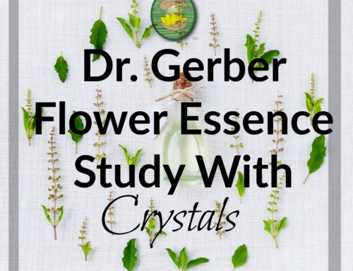 Dr. Gerber Flower Essence Study With Crystals
