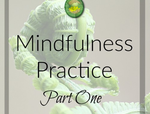 Mindfulness Practice Part 1