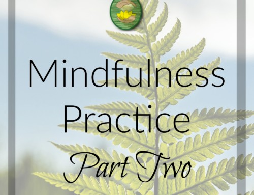 Mindfulness Practice Part 2