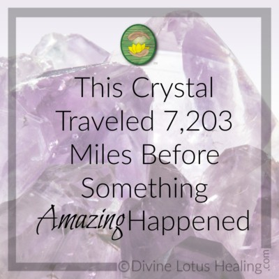 Divine Lotus Healing | This Crystal Traveled 7,203 Miles Before Something Amazing Happened