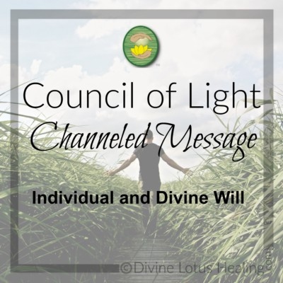 Divine Lotus Healing Council of Light Channeled Message Individual and Divine Will