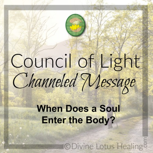 Divine Lotus Healing Council of Light Channeled Message When Does a Soul Enter the Body