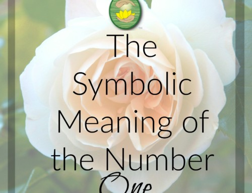 The Symbolic Meaning of the Number One