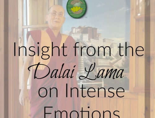 Insight from the Dalai Lama on Intense Emotions