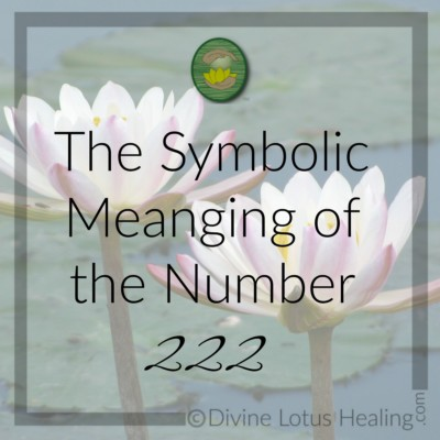 Divine Lotus Healing | The Symbolic Meaning of the Number Two
