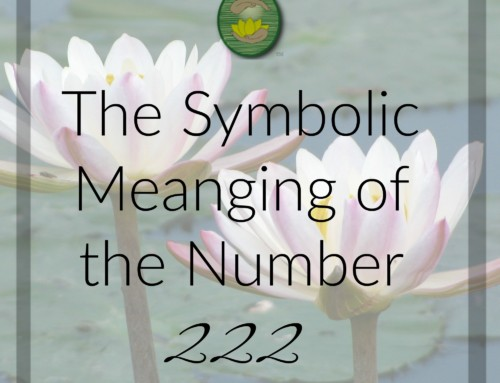 The Symbolic Meaning of the Number Two