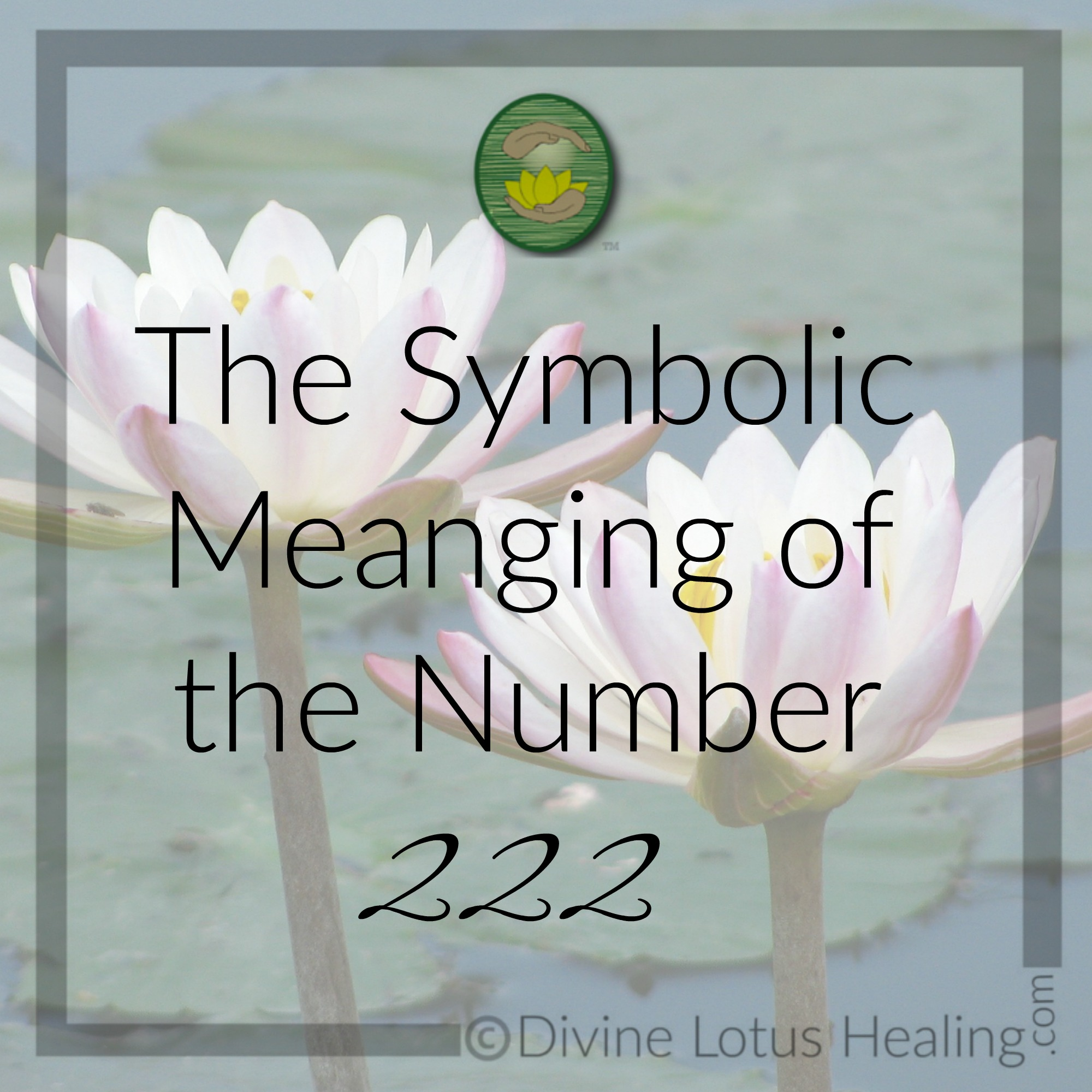 The Symbolic Meaning Of The Number Two Divine Lotus Healing