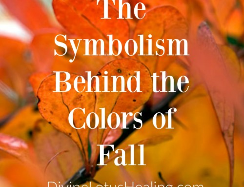The Symbolism Behind the Colors of Fall
