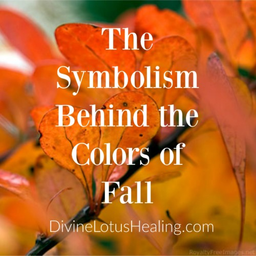 Divine Lotus Healing | The Symbolism Behind the Colors of Fall