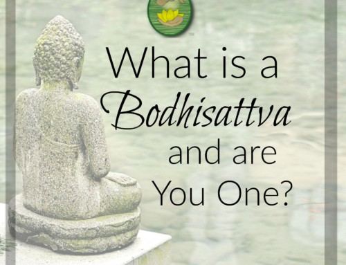 What is a Bodhisattva and are You One
