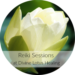 Divine Lotus Healing Reiki Sessions in Office