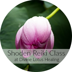 Divine Lotus Healing | Reiki Level One Class