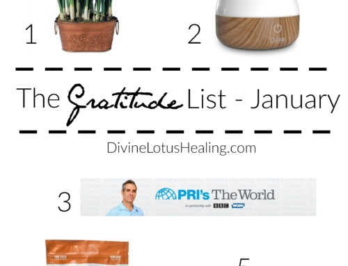The Gratitude List January 2017