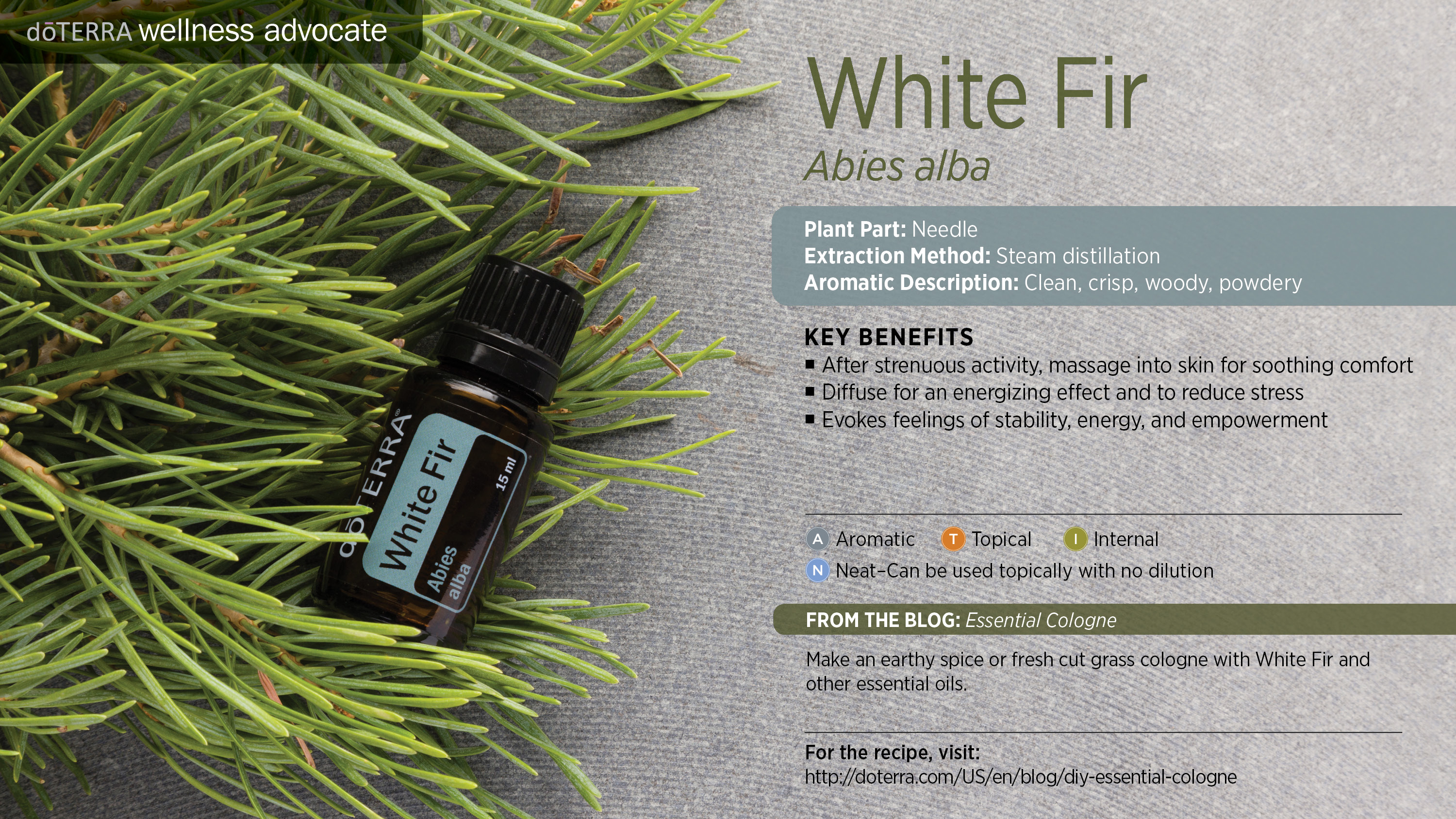 The doterra woody oils list divine lotus healing - Fir tree syrup recipe and benefits ...