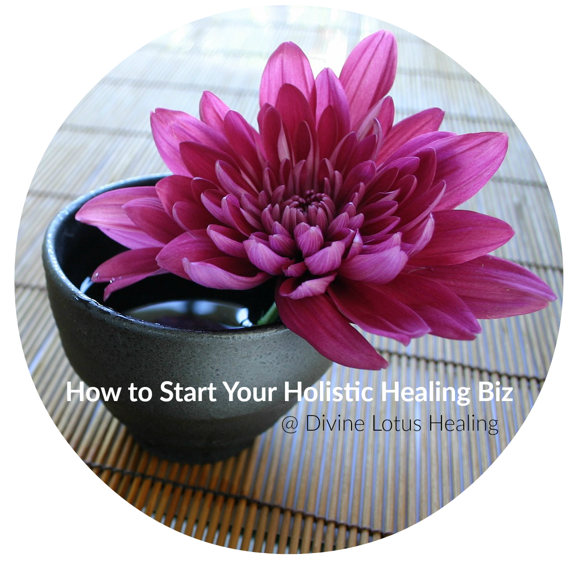 How to Start Your Holistic Healing Biz at Divine Lotus Healing