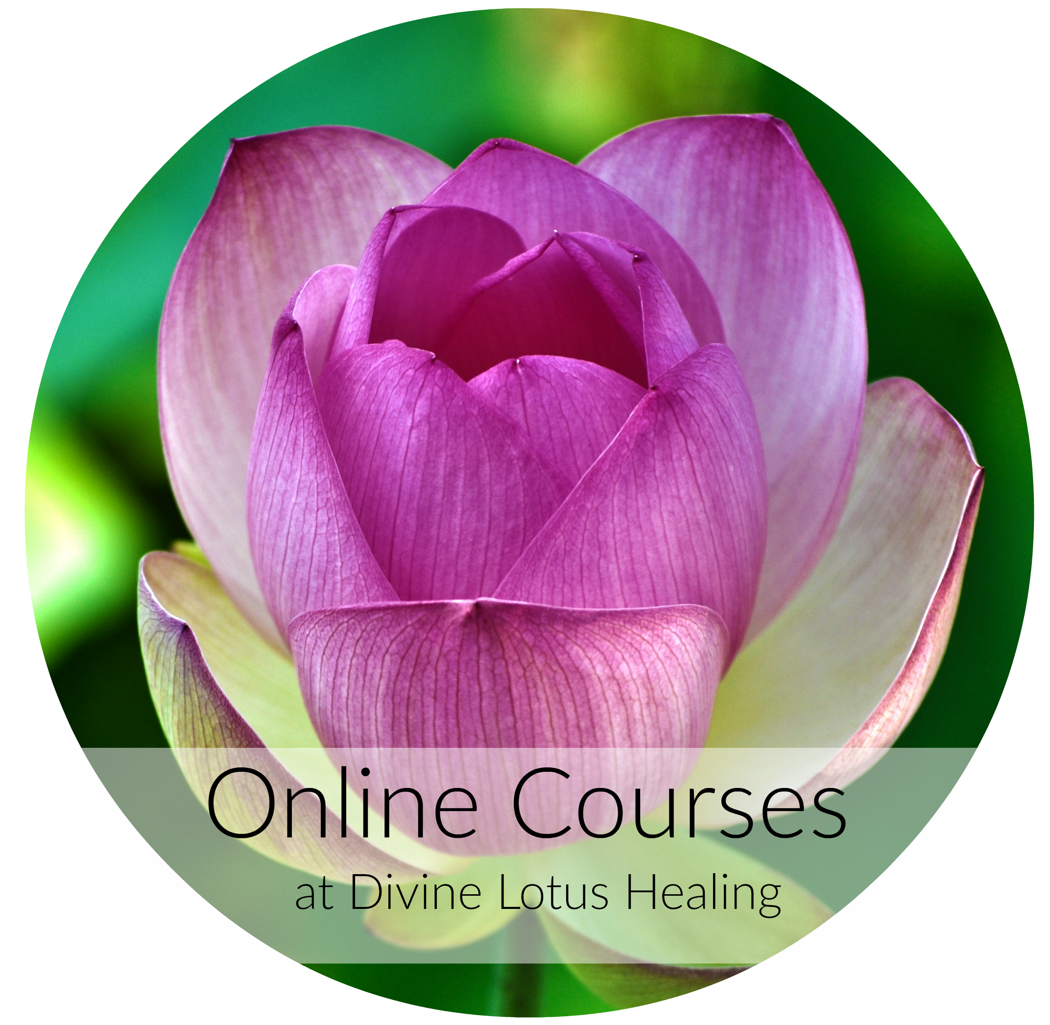 Online Courses at Divine Lotus Healing