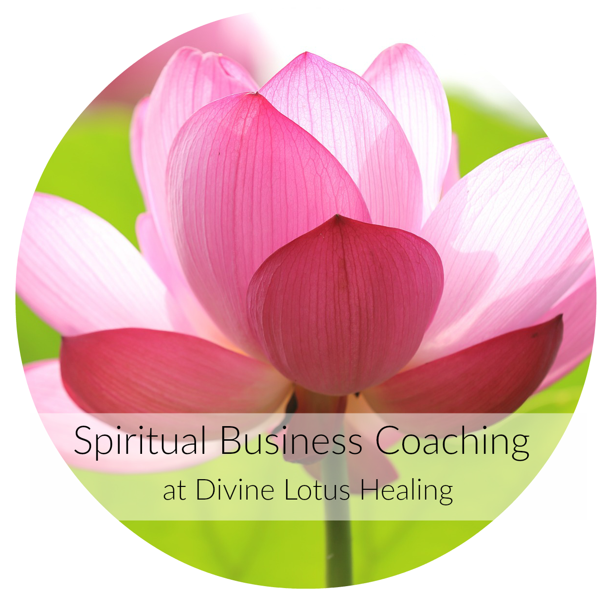 Divine Lotus Healing Spiritual Biz Coaching