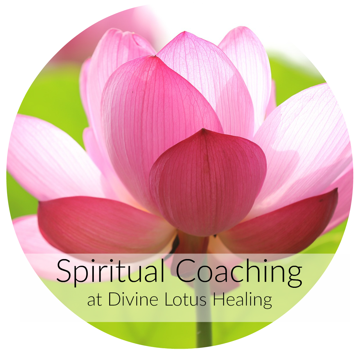 Spiritual Coaching at Divine Lotus Healing