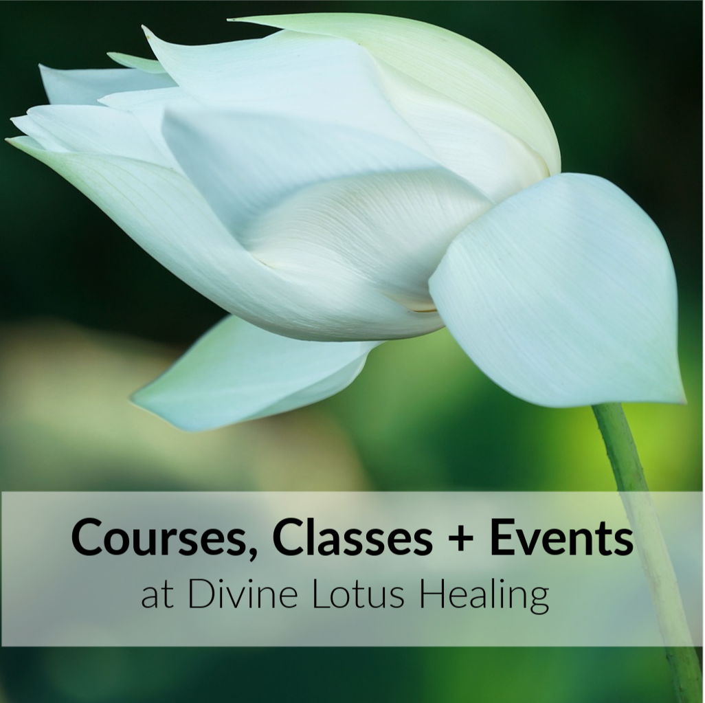Divine Lotus Healing Courses