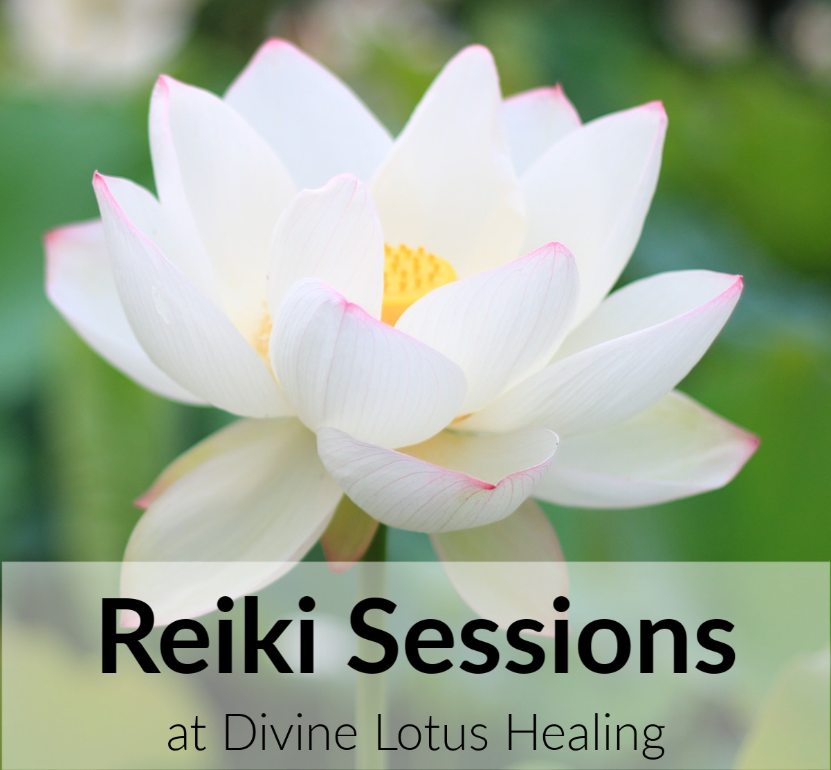 Reiki Sessions at Divine Lotus Healing